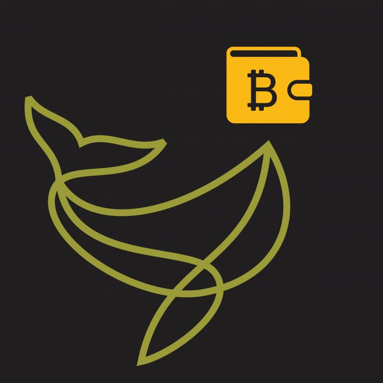 Keeping a Lot of Bitcoins in One Wallet Is a Bad Idea