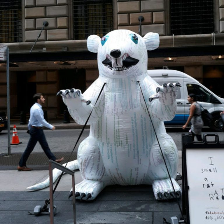 A Bitcoin Rat Is Occupying Wall Street